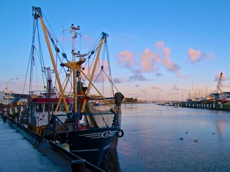Flemish Fishermen want to appeal to `` Eternal Access ...